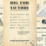Dig for Victory Official Government Leaflets from WW2