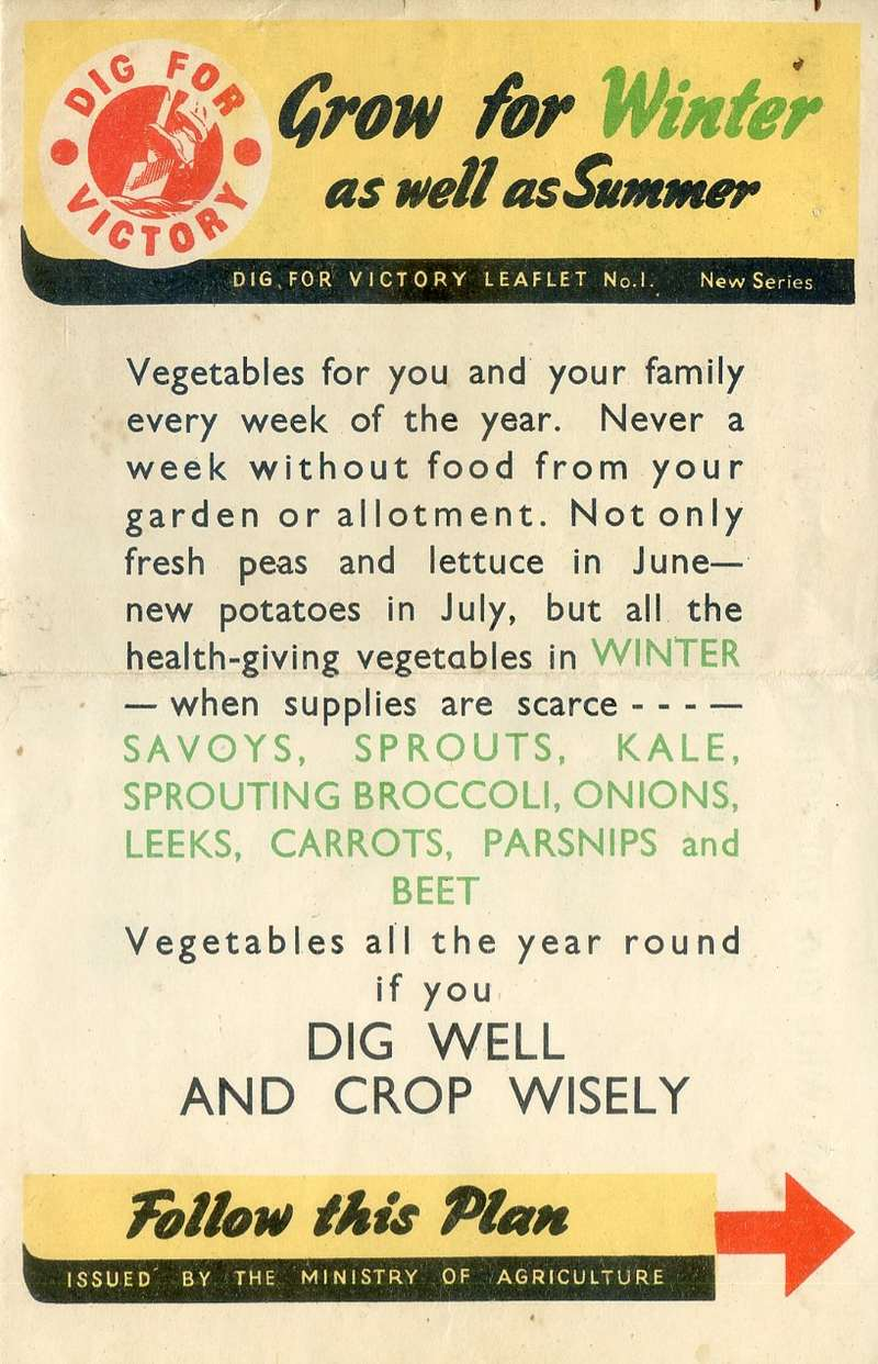 vegetables for you and your family every week of the year never a week without food from your garden or allotment