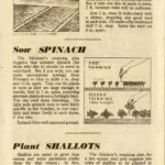 Sowing & Planting Guide