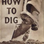 How to Dig DfV 20