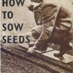 How to Sow Seeds DfV 19