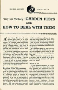 Garden Pests Guide