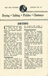 Guide to Drying Salting Pickles Chutneys