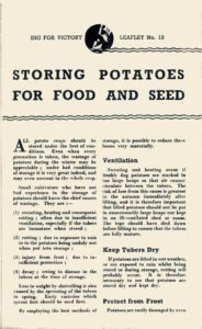 Storing Potatoes Guide