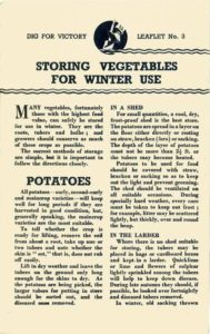 Storing Vegetables Guide