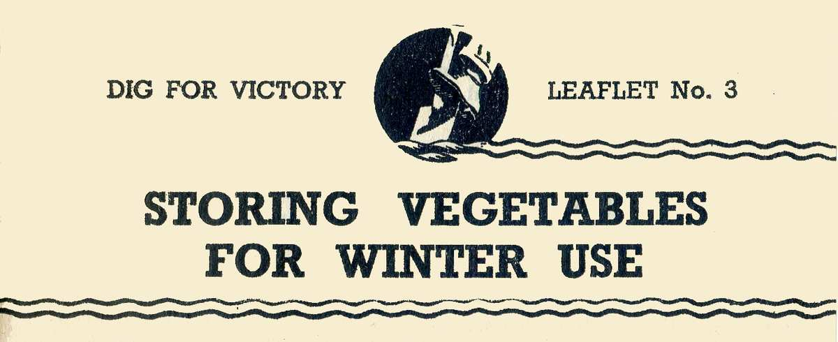 Storing Vegetables for Winter Use