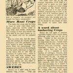 Root Crops, Harvesting Help