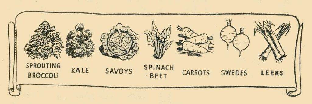 Lean Period Crops