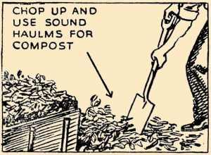 Composting Potato Haulm